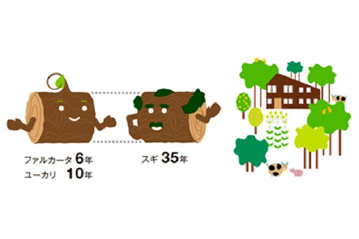 早生植林の活用